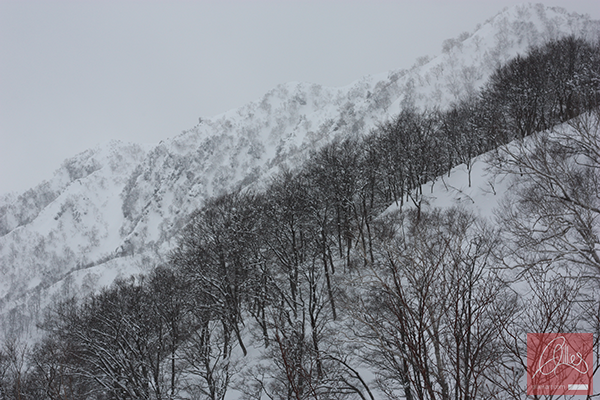 398-Hakuba-Japan-Gillies